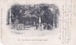 Saigon Vietnam Indo China Entrance Jardin Antique Postcard