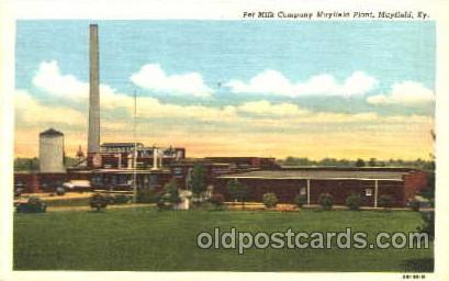 Pet Milk Companym Mayfield, Plant, Mayfield, KY, USA Dairy, Cow Cows, Postcar...