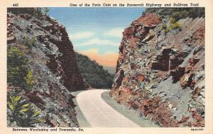 Roosevelt Highway Between Wyalusing & Towanda, PA, Early Linen Postcard, Unused