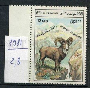 265621 AFGANISTAN 1981 year MNH stamp mouflon