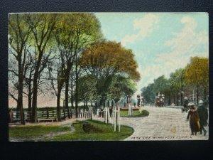 London WIMBLEDON COMMON Park Side c1906 Postcard by Mercury Series