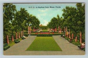 Miami FL-Florida, Tropical Walkway at Bayfront Park, Benches, Linen Postcard
