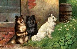 Three Good Doggies       Artist: Schonian
