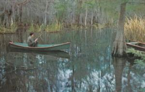 Louisiana Serenity Fishing In Louisiana's Deep South