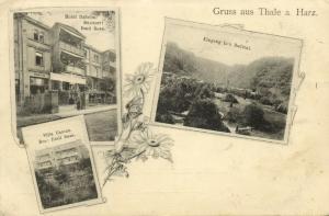 germany, THALE a. Harz, Multiview, Hotel Daheim, Villa Helene, Bodetal (1899)