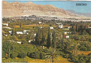 BR42733 City of palms in the jordan valley Jericho israel
