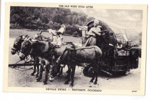 Pritchett CO Orville Ewing Mules Covered Wagon Postcard