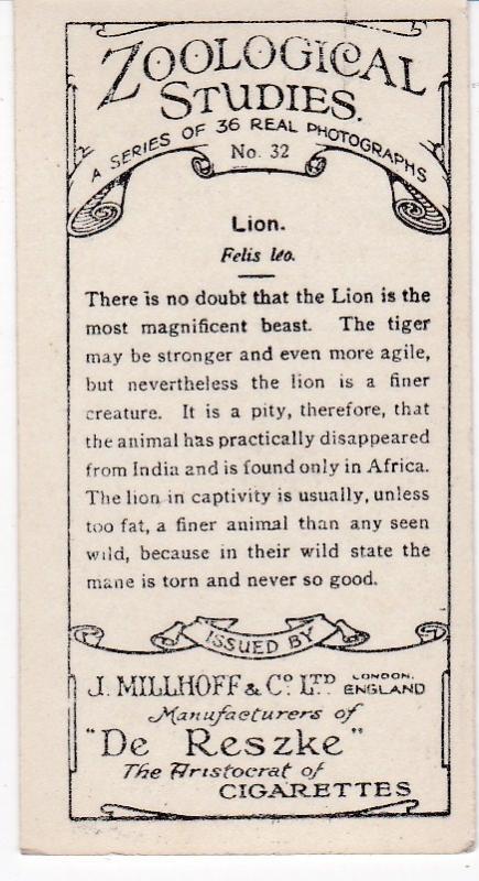 Cigarette Cards millhoff De Reszke Zoological Studies No 32 Lion