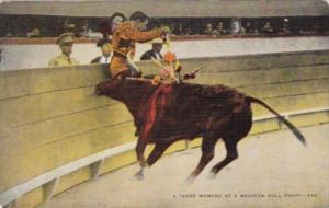 Bull Fight A Tense Moment At A Mexican Bull Fight