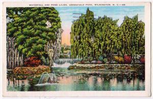 Waterfall & Pond Lilies, Greenfield Park, Wilmington NC