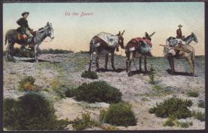 Donkeys,On the Desert