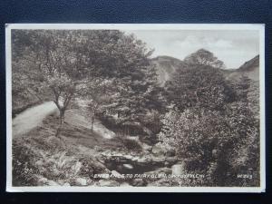 Wales DWYGYFYLCHI Entrance to Fairy Glen c1934 Postcard by Valentine W269