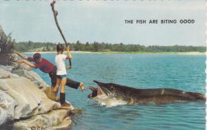 Fishing : The Fish are biting good , HARROWSMITH , Ontario , Canada , 50-60s