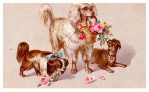 Dogs , Flowers ,   Victorian  Card