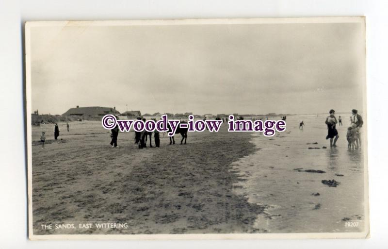 tq2276 - Sussex - Horse Rides on Sands at Low Tide, at East Wittering - Postcard