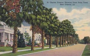 Louisiana New Orleans Charles Avenue Showing Giant Palm Trees Curteich