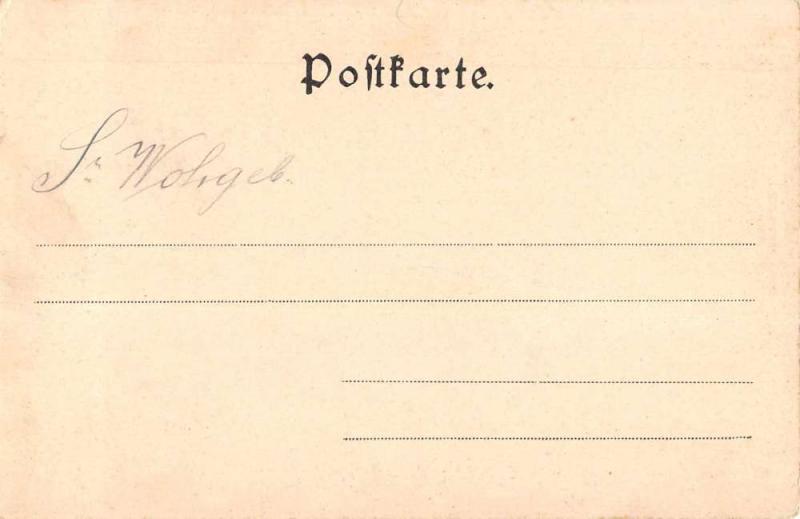 Tweng Salzburg Austria Gruss aus Tauernhaus Wiesenegg antique pc Z17890