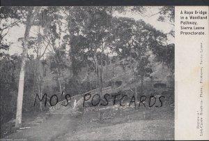 Sierra Leone Postcard - A Rope Bridge In a Woodland Pathway  MB1103