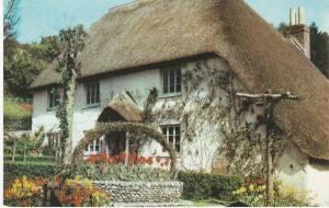 Post Card Devon COCKINGTON Torquay Rose Cottage