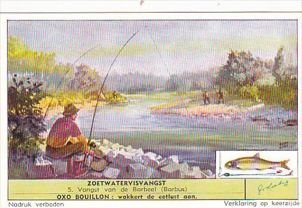 Liebig S1623 Freshwater Fishing No 5 Barbus