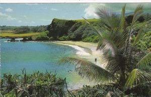Hawaii Maui Beautiful Beach Scene 1988