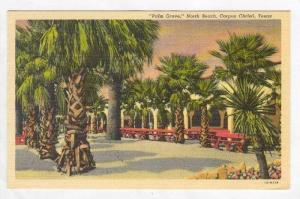 Palm Grove,  North Beach,Corpus Christi,Texas,1953