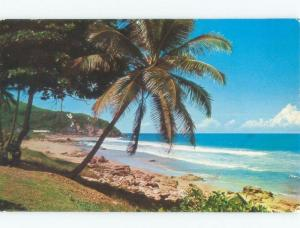 Pre-1980 BEACH SCENE Guajataca Beach Puerto Rico PR d8041