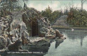 CHICAGO , Illinois , 1908 ; Sea Lion Pond, Lincoln Park