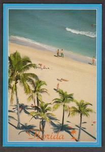View Of Palm Trees & Beach, Florida - 1960s - Unused