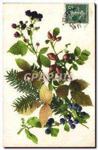 Old Postcard Flowers