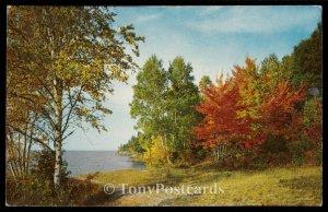 Beautiful Autumn Along The Lake