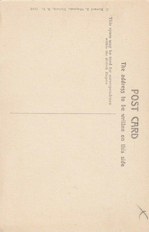 FIELD , B.C. , 1900-10s ; Mt Field