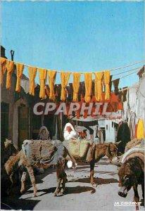 Modern Postcard Scenes et Types Souk of the Dyers Donkey Donkey