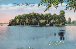 Indiana Peru Coney Island Lake Manitou A Natural Beauty Spot