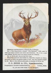 VICTORIAN TRADE CARD Hood's Sarsaparilla Buck