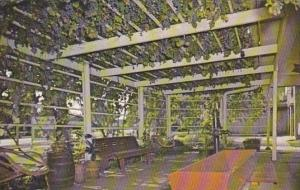 Iowa Amana Ackeman Winery 100 Year Old Grape Arbor