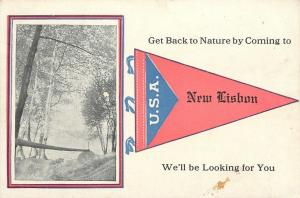 Get Back to Nature in New Lisbon Wisconsin~We're Looking~1914 Pennant Postcard