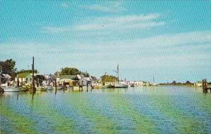 Maryland Smith Island The Harbor At Ewell
