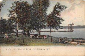 Waukesha Beach near Waukesha Wisconsin 1907c Rotograph postcard
