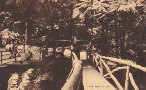 Rustic Bridge At Camp Tuscazoar Ohio Artvue