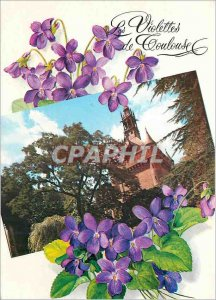 Modern Postcard Toulouse Les Violettes