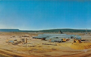 LP01 Navajoland  New Mexico Postcard Timber Products Plant Photo by Fred Patton