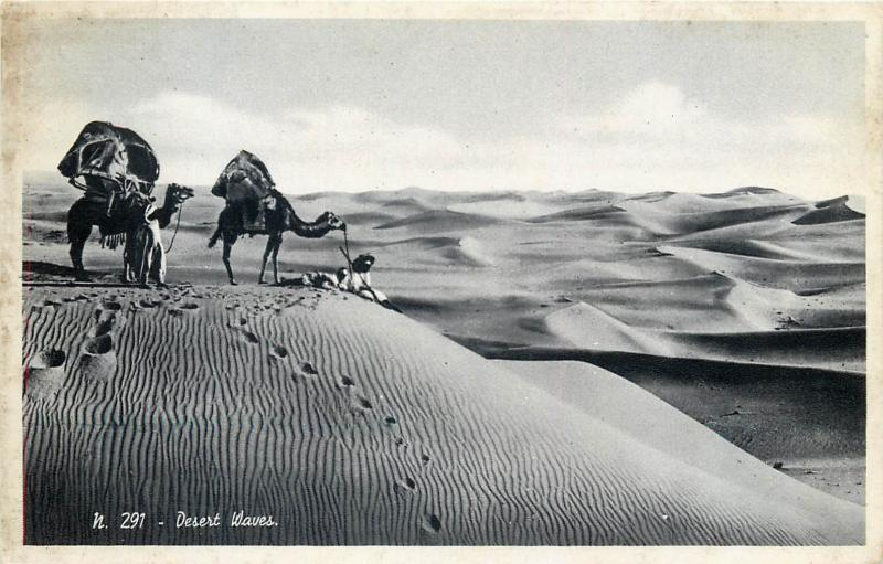 Egypt desert waves real photo postcard