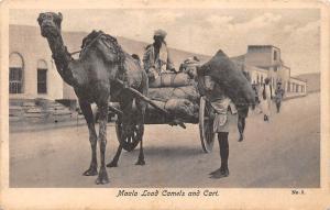 Yemen, Aden, Maala Load Camels and Cart, Carriage, native people