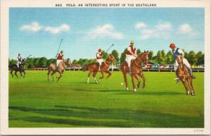 Polo 'An Interesting Sport in the Southland' Players Horses Unused Postcard F1