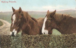 Two horses. Making friends Old vintage English postcard