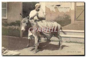 Old Postcard Bourricotier Indigene Algeria Ane