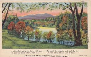 Pennsylvania Greetings From Mount Holly Springs Curteich