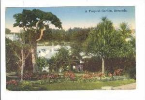 A Typical garden, Bermuda, 00-10s