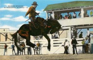Linen Postcard; Bucking Bronco Wonderful Wyoming Western Rodeo Cowboy Unposted